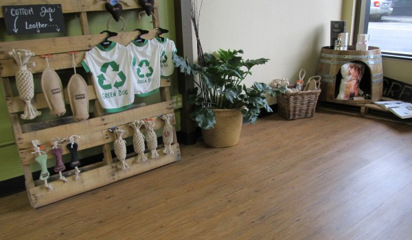 Green Dog Boutique